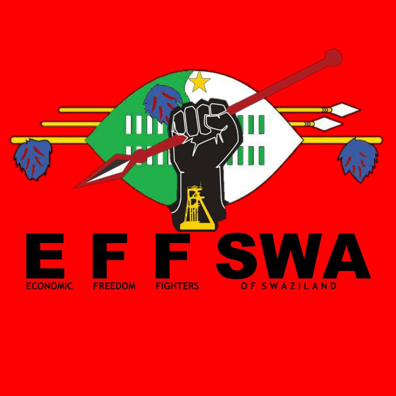 EFF Swaziland urges the youth to fight for political and economic freedom