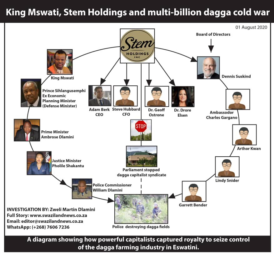EXPOSED:King Mswati, Stem Holdings and the multi-billion political dagga cold war.